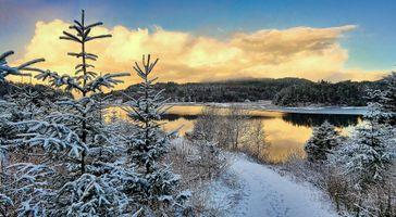 Заставки Djupadalen, Norway, закат, река, деревья, пейзаж