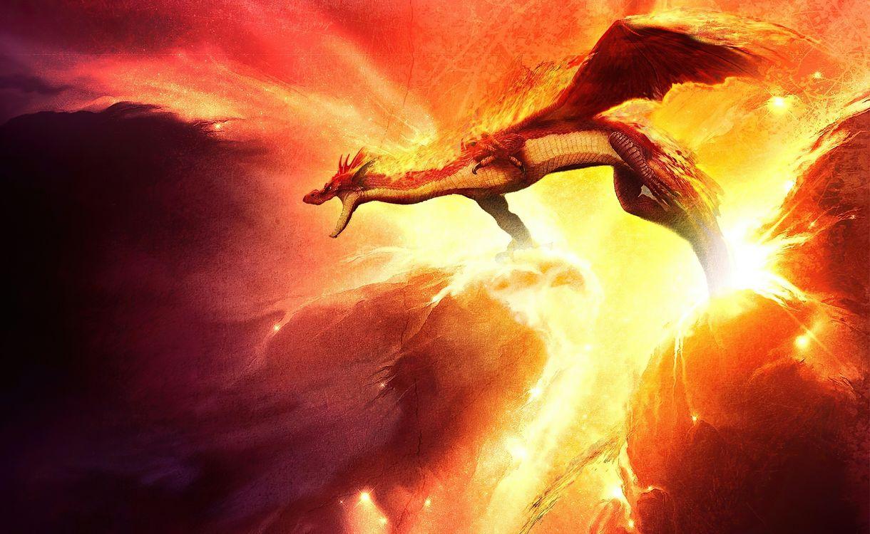 Фото бесплатно дракон, художник, произведение искусства - на рабочий стол