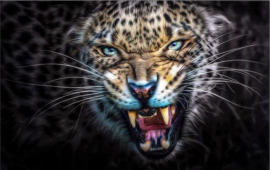 Заставки большая кошка, ярость, пасть