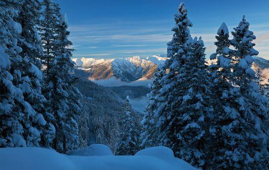 Photo free bavaria, nature, winter