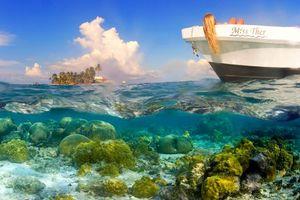 Бесплатные фото тропики,море,остров,лодка,девушка,отдых