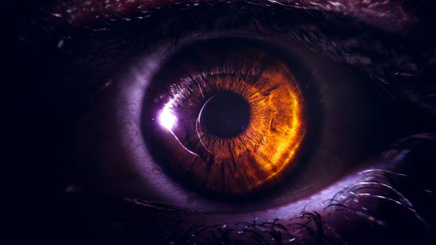 Photo free macro, digital art, orange eye
