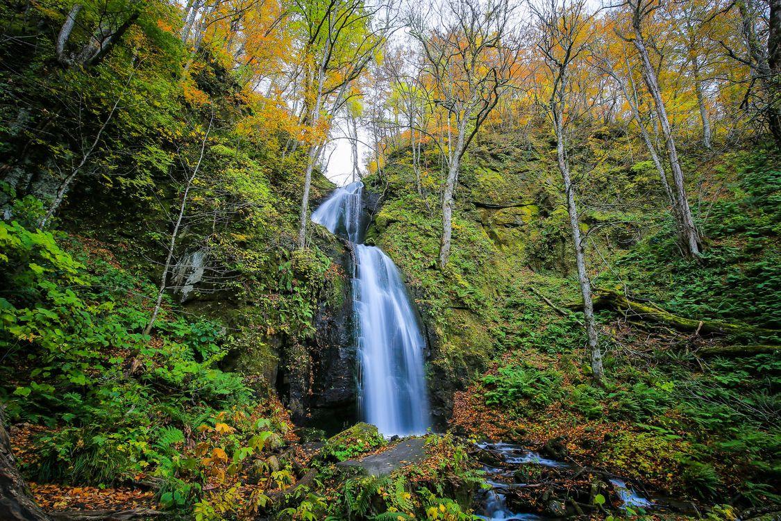 Фото бесплатно осень, лес, скалы, водопад, природа, деревья, природа