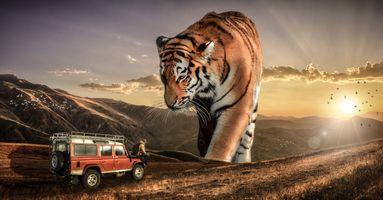 Бесплатные фото закат солнца,автомобиль,парень,горы,тигр,фантазия,фантастика