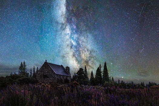 Заставки Млечный Путь, ночь, деревья
