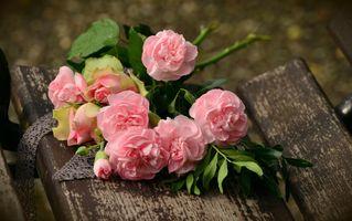 Фото бесплатно любовь, день рождения, розы