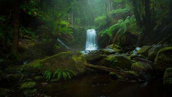 Фото бесплатно Horseshoe Falls, лес, деревья