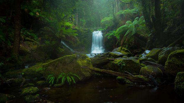 Заставки Horseshoe Falls, лес, деревья