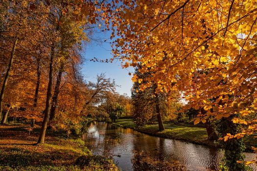 Заставки Нидерланды,Амерсфорт,река,канал,осень,деревья,парк,ветки деревьев,осенние листья,тропинка,природа,пейзаж