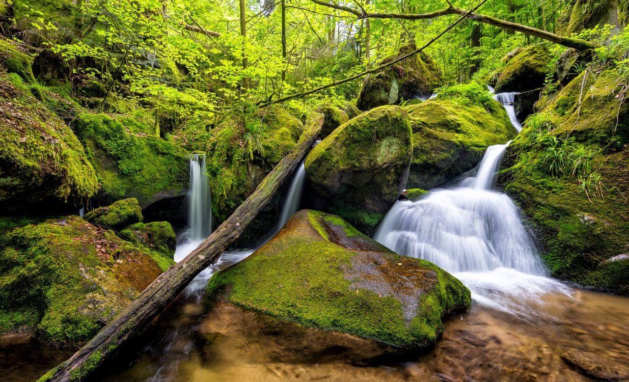 Фото бесплатно водопад лес камни - на рабочий стол