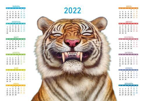 Photo free 2022, tiger, cat