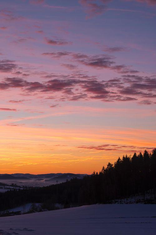 Фото бесплатно небо, деревья, рассвет, снег, облака, sky, trees, dawn, snow, clouds, пейзажи