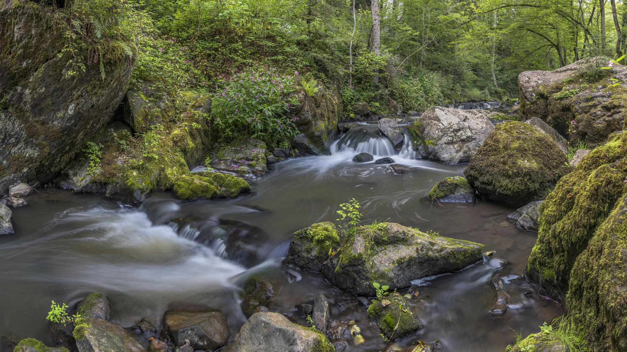 Обои лес, деревья, камни, водопад
