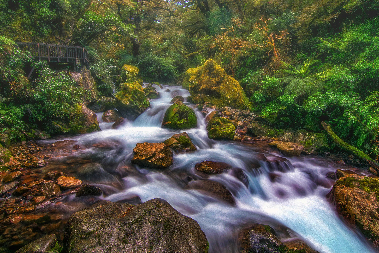 Национальный парк Фьордленд, Милфорд, тропические леса, Южный остров, Новая Зеландия, лес, река, мост, камни, водопад, пейзаж