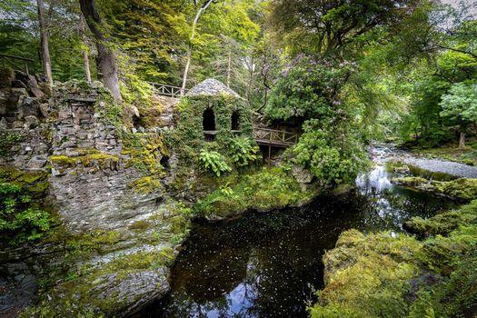 Бесплатные фото Лесной парк Толлимор,Северная Ирландия