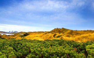 Фото бесплатно пейзаж, красочный, холм