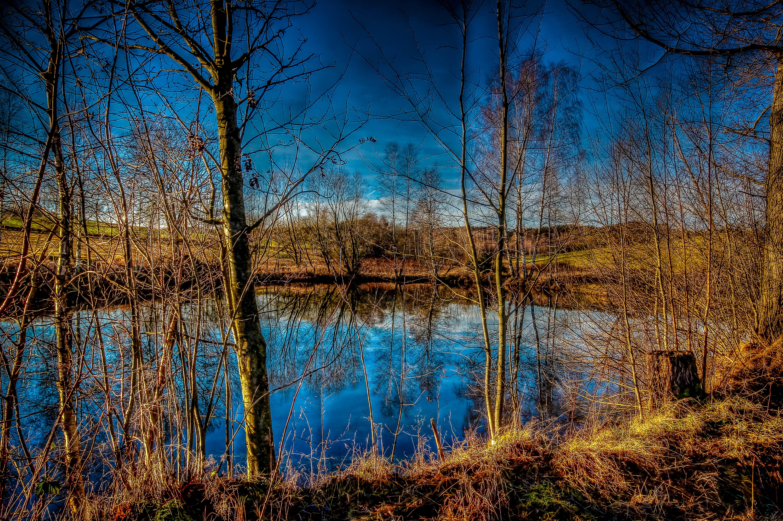 Обои озеро, осень, деревья, пейзаж