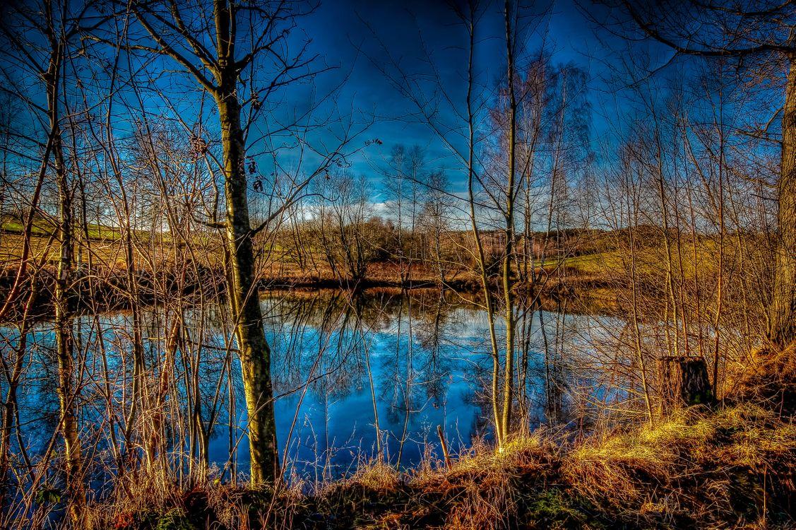 Фото бесплатно озеро, осень, деревья, пейзаж, пейзажи