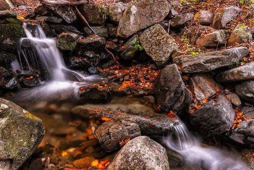 Photo free autumn, river, brook