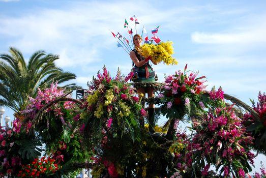 Фото бесплатно мимоза, цветы, много