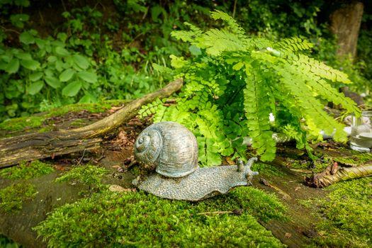 Фото бесплатно улитка, макро, лес