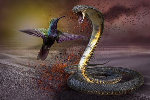 Фото бесплатно колибри, кобра, змея