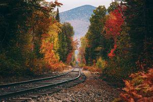 Фото бесплатно осень, деревья, железная дорога