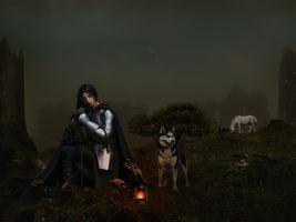 Бесплатные фото девушка рыцарь,собака,лошадь,ночь,лампа,фотошоп,фантазия