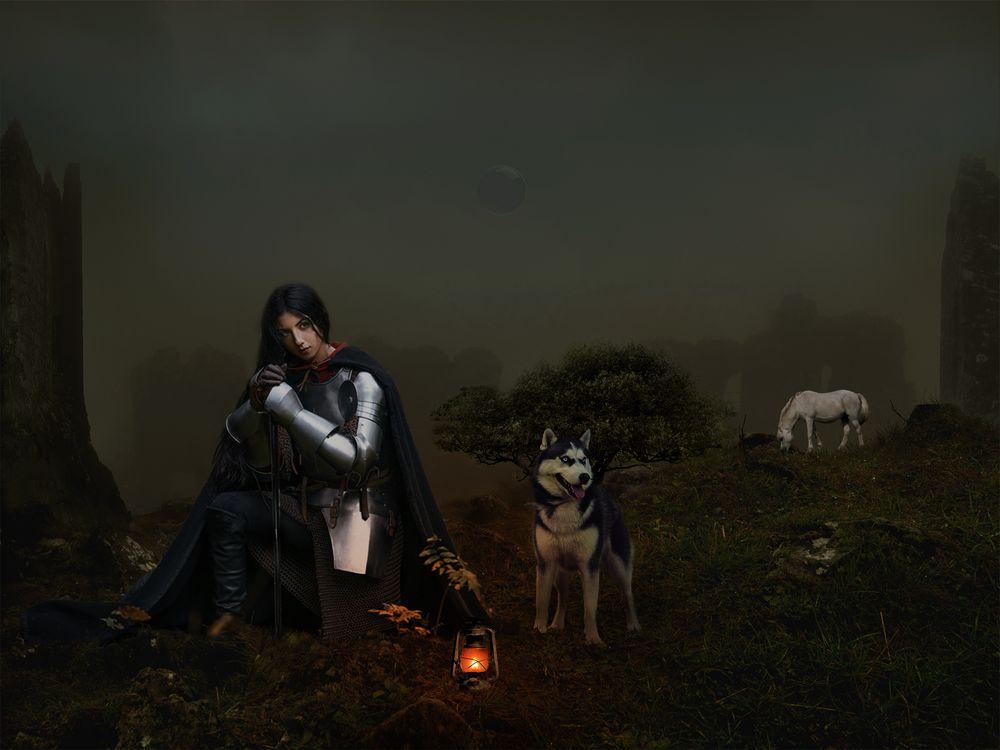 Фото бесплатно девушка рыцарь, собака, лошадь, ночь, лампа, фотошоп, фантазия, art, рендеринг
