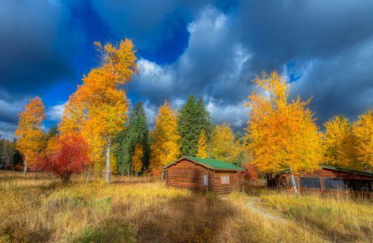 Photo free Jackson, United States, Golden autumn
