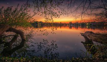 Заставки озеро, закат солнца, сумерки, деревья, лес, природа, пейзаж
