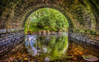Бесплатные фото река,мост,тоннель,арка,вода,камни деревья,пейзаж