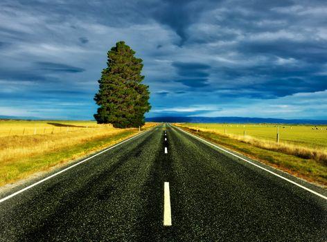 Фото бесплатно Новая Зеландия, дорога, поле