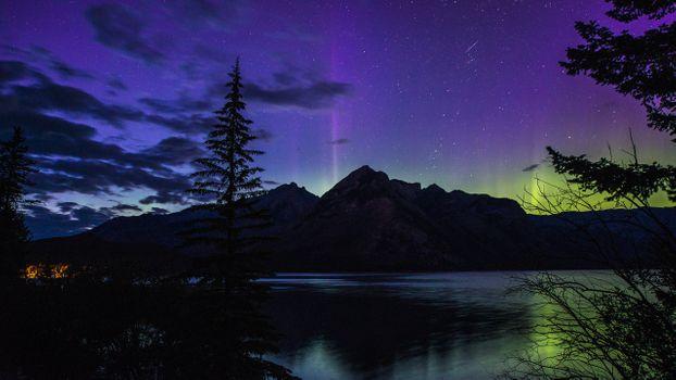 Photo free night, lake, stars