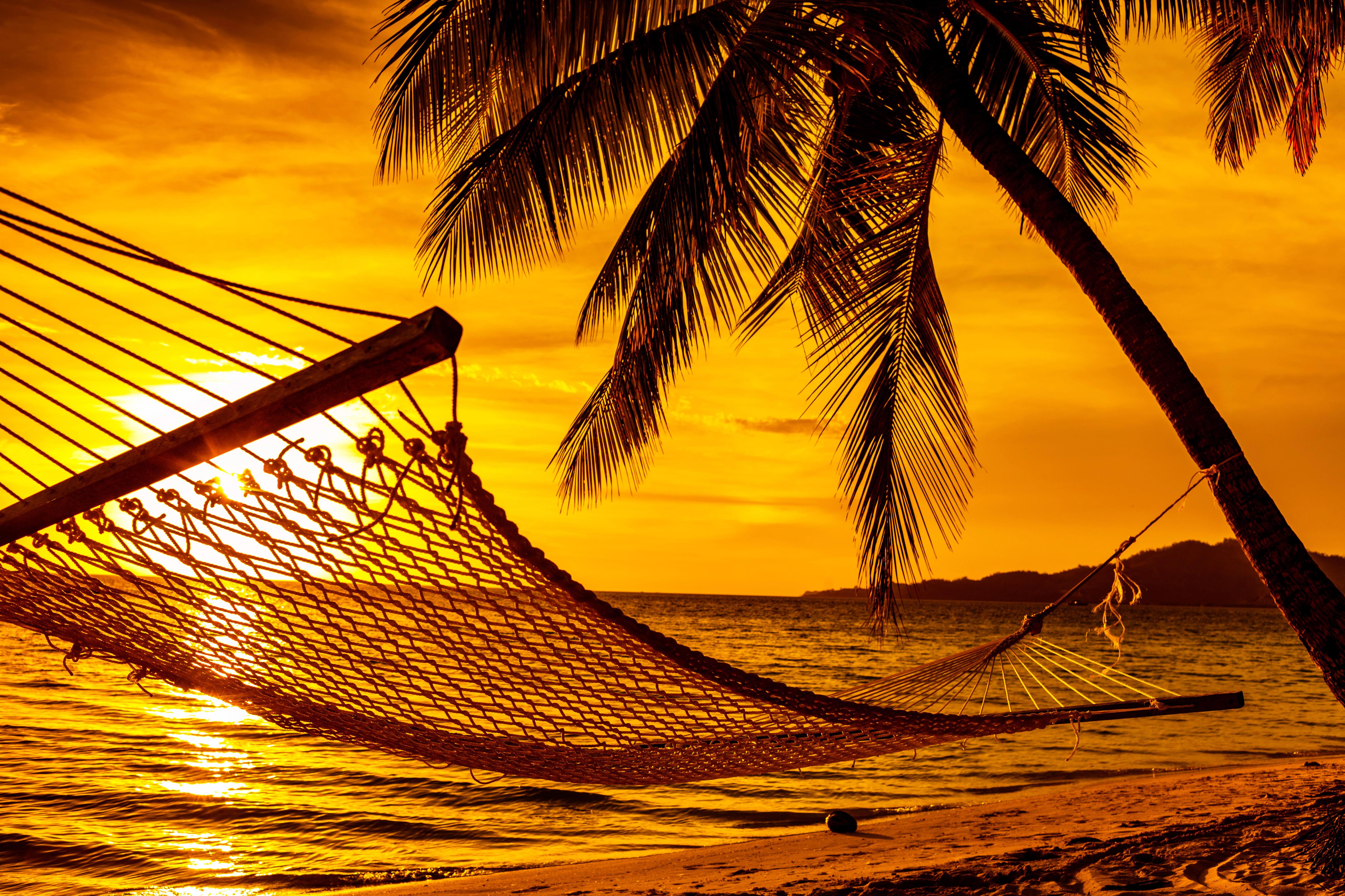 Обои тропики, море, пляж, закат