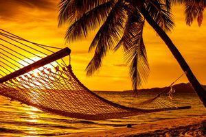 Бесплатные фото тропики,море,пляж,закат,гамак