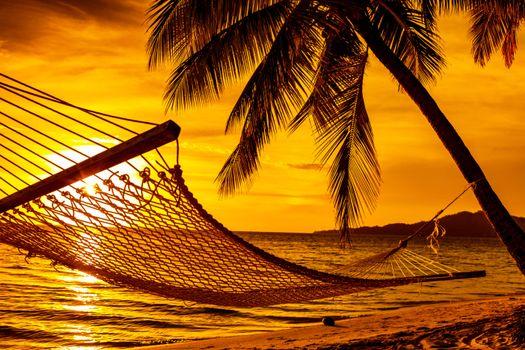 Photo free beach, hammock, sunset