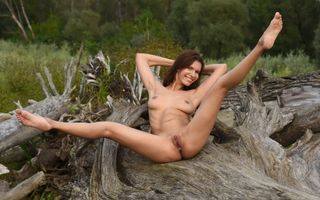 Photo free suzi r, brunette, nude