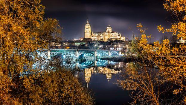 Photo free The bridge Enrique Esteban, Salamanca Cathedral, night