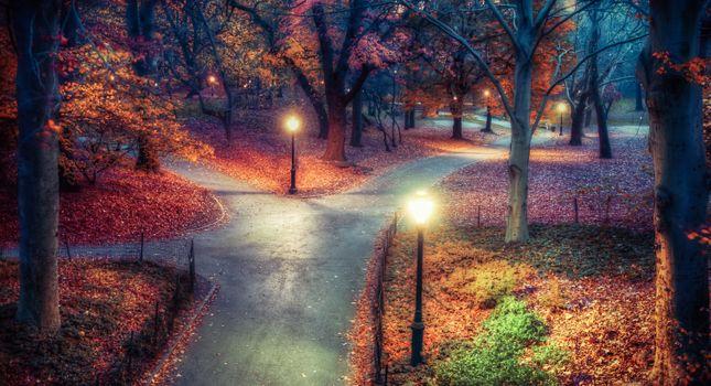 Photo free New York, central park autumn, night