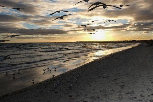 Фото бесплатно пляж, берег, пейзаж