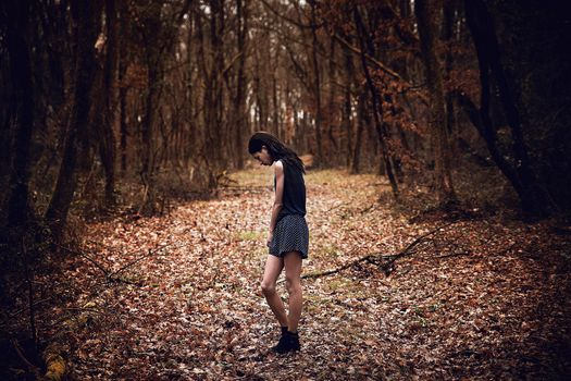Photo free sun light, forest, woman