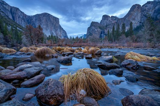 Photo free Merced River, dawn, trees