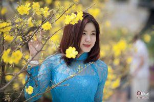 Заставки Азиатские, женщины, рыжая
