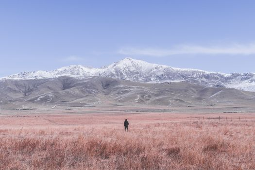 Photo free lonely man, field, mountains