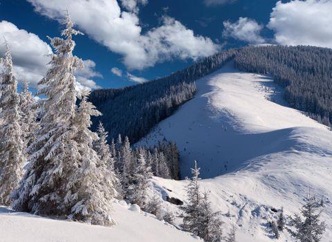 Download screensaver landscape, nature, snow