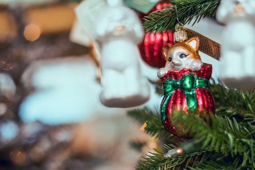 Photo free christmas 2019, decoration, cat