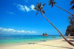 Бесплатные фото тропики,море,остров,пляж,пальмы,песок,отдых