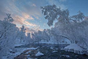 Бесплатные фото Finland,Lapland,Финляндия,Лапландия,зима,река,деревья