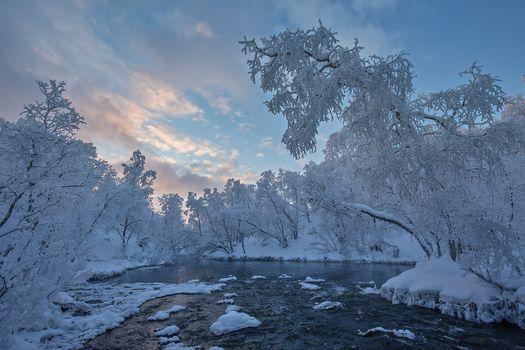 Фото бесплатно Finland, Lapland, Финляндия, Лапландия, зима, река, деревья, пейзаж